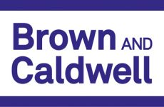 Brown and Caldwell names D'Amato CEO