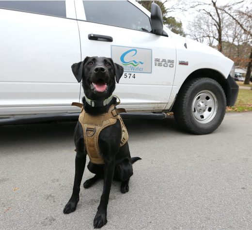 ASTERRA to host Vessel, first U.S. leak-finding dog, at WEFTEC
