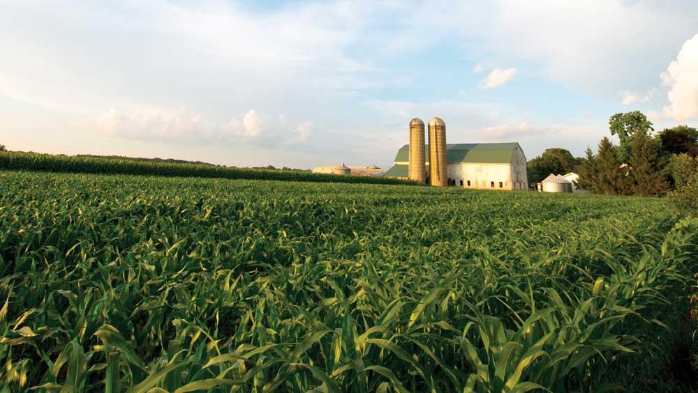 farm with barn and silos