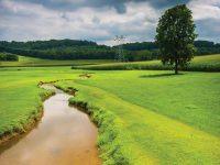Examining New Payment Methods to Address Agricultural Nutrient Runoff